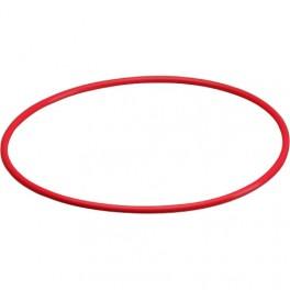 Olympus POL-053 O-ring originale per custodia Olympus PT-053