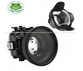 """Seafrogs Custodia Sub per Fujifilm X-T30 16-50 mm/18-55 mm + Dome Port 6"""" (WA-005 F)"""